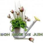 juin_003