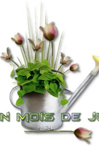 LES NEWS DE JUIN